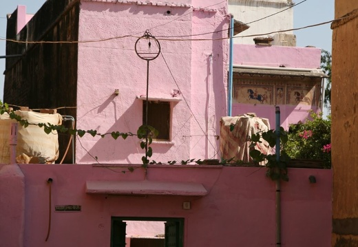 Pink haus in Fatehpur 46