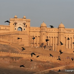 Amber Fort Palace अमेर किला